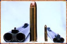 700+nitro+pistol